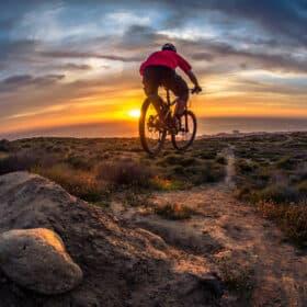 El-mountainbike testoversigt: Få det det store overblik