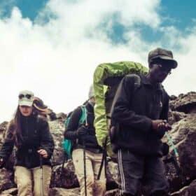 Stor testguide: De bedste vandrestave til din næste tur – hvad siger eksperterne?