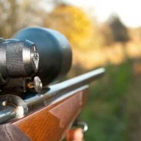 Testoverblik: Her finder du de bedste skydestokke til din næste jagt