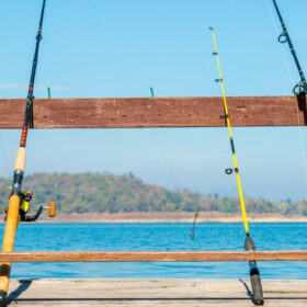 De bedste fiskestænger ifølge eksperterne – til din næste tur på vandet